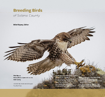 Click to open pdf of title page © 2014 Napa-Solano Audubon Society