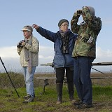 NSAS Viewing Station at SF Bay Flyway Festival © 2008 Dave McMullen